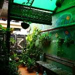 Bird Nest Guest House I resmi