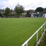 crown green bowls on site