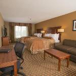 Фотография BEST WESTERN PLUS Lake Lanier/Gainesville Hotel & Suites