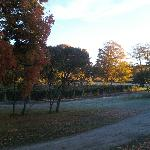 Bright and early at the winery