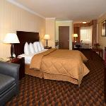 Comfort Inn & Suites LAX Airport