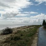 walking or jogging path near the jetty