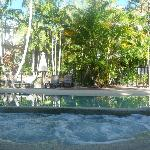 Relax in the spa and pool in tropicalo gardens