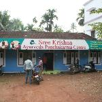 Sreekrishna Ayurveda Panchakarma Centre