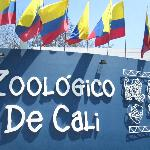  Best zoo in South America - highly recommended