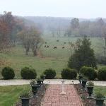 Φωτογραφία: Spring Grove Farm Bed and Breakfast
