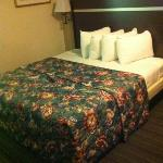 Φωτογραφία: Red Roof Inn Charlotte Airport West