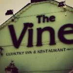  The Vine