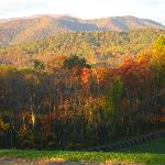  Peak of fall leaves 10/20/12