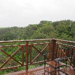 A private balcony overlooking the forest