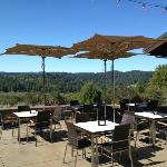 Gary Farrell Winery