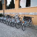  Free to use bikes