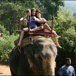 Our Elephant Ride Trip