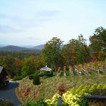  N. GA Mountains overlooking the vineyard from the winery balcony.