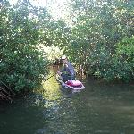 Paddling the mangrove tunnels in Thousand Islands