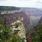 North Rim vista from the Widforss Trail