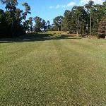  Well kept fairways - but beware! factor the elevation changes when you grab a club!