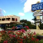 Harvey's Motelの写真