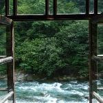 View from a river room