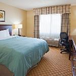  CountryInn&amp;Suites Owatonna GuestRoomQueen