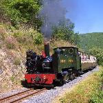 Vale of Rheidol Railway