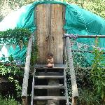 Mowgli guarding the entrance to the yurt