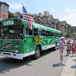 Turtle bus