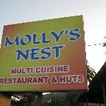 Photo de Molly's Nest