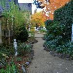 Path from main house to cottages