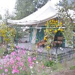 Bilde fra Banjara Camp &  Retreat - Sangla Valley Camp