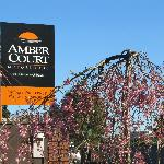 Amber Court Motor Lodge Foto