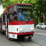  The trolly you can take to Kadriorg and Kumu