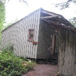 Deep Forest Cabins at Mt. Rainierの写真