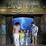 ‪The Lost Chambers Aquarium in Atlantis, The Palm‬