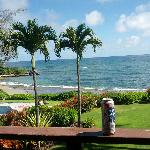 View off the lanai