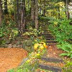 Foto de Lakecliff Bed and Breakfast