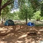 Photo of Fruita Campground Capitol Reef National Park