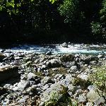 River on property - short walk from your cabin & can hear it on porch/from windows