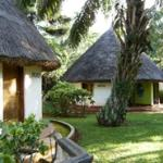 Thatched rooms