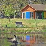 FWC's Main Cabin and Adjacent Pond