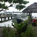 Back yard view of river and shrimp boats from where we get our fresh seafood.