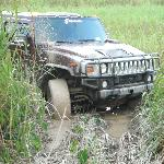 Off Road in the Everglades