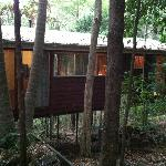 Photo de Tree Houses of Montville