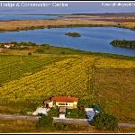 Bed & Birding - Aerial photograph of Branta Birding Lodge