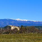  La maison d&#39;hte et le Mont Ventoux vus des vignes