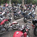 Scooteroo Tours- Day Tours