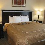Comfort Suites Indianapolis King Bed