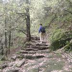 the trekking trail