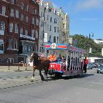Horse Tram approaching at the base of the road