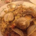 Lots of clams